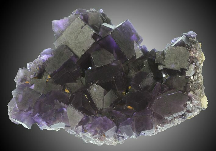 "3.8"" Purple Cubic Fluorite - Cave-In-Rock, Illinois"
